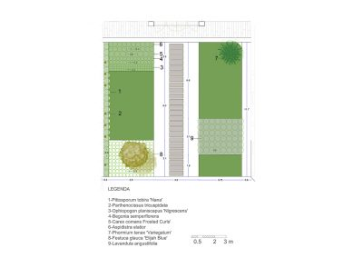 CorteRosada_plan_verde